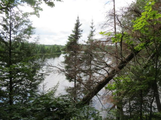 Beautiful wooded lot is waiting for you to build your own dream home today! Nestled on 1.6 acres, this lot offers you 158' of frontage on Upper Park Falls Lake. Perked for conventional septic, this lot gives you the opportunity to surround yourself with nature. Heavily wooded birch, maple, pine and cedar, western exposure, sand frontage near Chequamogon National Forest. Totally private setting.