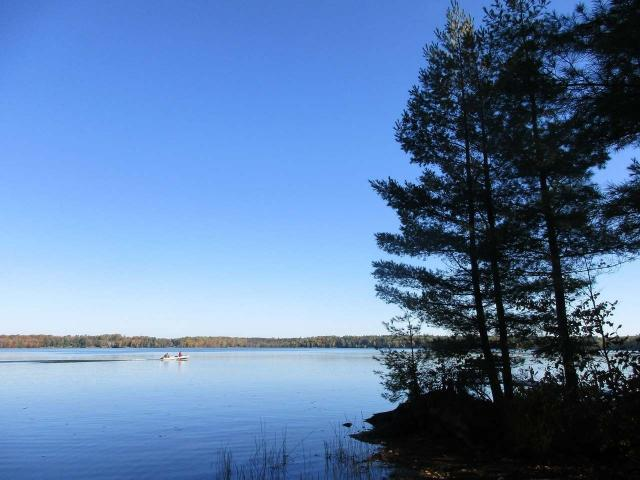 Rare Offering on Clear Lake of the Manitowish Chain of Lakes. End of the road privacy. This property offers 326 +/- feet of perfect frontage as well as 2.95+/- acres of well wooded Northern Wisconsin Solitude. The location of the improvements on this parcel allow for expansion or the construction of a larger residence - there is a gorgeous building site located adjacent to the cabin. New survey (2018) clearly shows all lines and corners. New conventional septic (2015). The property adjoins 1,000's of acres of the Northern Highland American Legion State forest which ensures the current secludedness will last a lifetime. Whether you're looking for a buildable lot or property with a solid cabin on the best lake of the Manitowish Chain you've just found both.