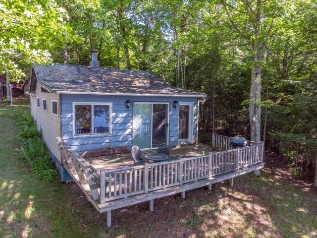 Get on a nice lake for a fraction of the usual price! This 2 bedroom cabin is just a mile North of the WI border, is on 496-acre Chaney Lake and features a range, refrigerator, and large deck with rocky weed less frontage. Newer flooring and drywall was installed recently. Has detached garage, large shed and an outdoor privy. A nice getaway as is or bring your plans to make it even better by adding a septic, well and upgrading the cabin. Loaded with potential, you get an easy approach to the water, million-dollar views, garage, and a cabin which can be enjoyed as is or upgraded. Come take a look at this bargain today!