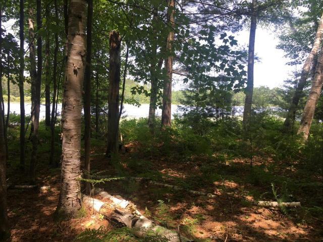 RHINELANDER CHAIN LOT! Build your dream home on the Rhinelander chain where you can enjoy many hours of fun on Rhinelander Flowage, Boom, Bass, Thunder lakes and Lake Creek; over 1700 acres of water. This .80 acre lot is flat, buildable, has a sandy shoreline, and has electric at the lot line and natural gas by the town road. Create your own slice of heaven. Conveniently located close to Rhinelander for shopping, entertainment, and medical facilities. Lots of opportunities for summer and winter sports!