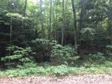 Wooded 1.06 acre lot on Maple Lane, 165 ft of frontage. Quiet area with no neighbors, yet only 15 minutes to downtown Minocqua for shopping, restaurants and bike trails. Snowmobile trail is right there for you to enjoy. Only one street away from 642 acre Buckskin Lake