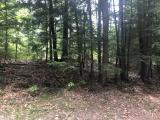 Wooded 1.21 acre lot on Maple Lane, 143 ft of frontage. Quiet area only 15 minutes to downtown Minocqua for shopping, restaurants and bike trails. Snowmobile trail is right there for you to enjoy. Only one street away from 642 acre Buckskin Lake!