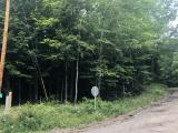 Wooded 1.27 acre corner lot on Maple Lane, 319 ft of frontage on Forest Ln. Quiet area with no neighbors, yet only 15 minutes to downtown Minocqua for shopping, restaurants and bike trails. Snowmobile trail is right there for you to enjoy. Only one street away from 642 acre Buckskin Lake!