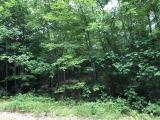 Wooded .78 acre lot on Maple Lane, 100 ft of frontage. Quiet area with no neighbors, yet only 15 minutes to downtown Minocqua for shopping, restaurants and bike trails. Snowmobile trail is right there for you to enjoy. Only one street away from 642 acre Buckskin Lake!