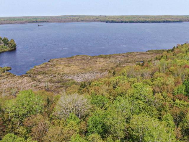If you're looking for privacy, a large lake, and abundant acreage you owe it to yourself to look at this 25.2-acre parcel with 1,200' of frontage on 496-acre Chaney Lake. Just North of the Wisconsin border, numerous WI and MI Northwoods attractions and conveniences are just minutes away as well as the best ski hills in the Midwest. A mixture of boardwalk and fisherman's frontage, there are plenty of great places for your dock and to enjoy our area's abundant wildlife. The thick woods are packed with mature timber and there are plenty of great places to build your dream getaway. Public land borders to the North giving you thousands of acres to hunt and play on. At this bargain basement price, nowhere else will you find this much frontage with this much acreage on a large lake.