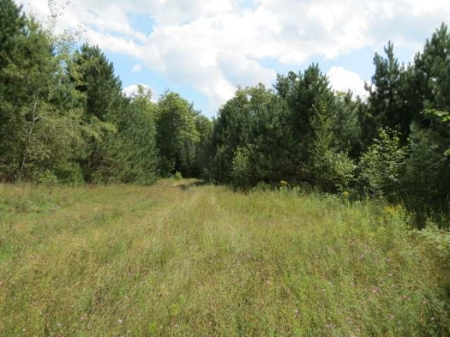 A beautiful site for creating your Northwoods Dream Home or a Great Hunting Camp! This 15+ acre lot is located on Hiawatha Lake Road in the Township of Winchester, just a few minutes from downtown Manitowish Waters. This lot boasts large hardwoods and pine trees, the road is already cut into a perfect building sight, power is located on the road and a gate is already in place for privacy! This perfect spot is teaming with wildlife: Deer, Grouse and Rabbits! Start your Northwoods dream today!