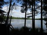 Gorgeous lakefront property in the heart of the Northwoods! This deep lot offers nearly 2 acres of wooded land & 105' of sand frontage on Tom Doyle Lake, a class A musky lake and a naturally producing walleye lake. Garrett's Landing consists of numerous on-water and off-water parcels. All lots that have already sold have perked for conventional septic systems. This property is located within a mile of several boat landings including Two Sisters and Muskellunge Lakes. Garrett's Landing is very close to the Northern Highland American Legion State Forest, as well as the snowmobile, hiking & biking trails. The protective covenants in place ensure consistent building standards for an added degree of security in your investment. The property is accessed by a town maintained road that is paved, with electric and phone at the lot line. Conveniently situated between Eagle River, Rhinelander and Minocqua, this is a perfect spot for your home or cabin! Walking trail in place - dock included!