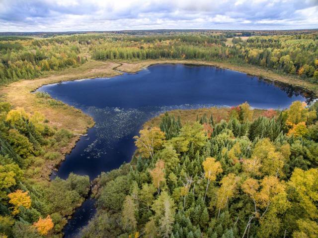 This 40-acre parcel with water frontage on Furbush Lake is a sportsman's dream come true. The property, which has public land adjacent, also includes a rustic cabin with a lot of potential given the right amount of TLC. Snowmobile's will be pleased to know the trail is nearby. Whether you are looking for the hunt of your lifetime or just privacy and peace of mind, this property has you covered! It's currently enrolled in MFL-OPEN so taxes are only about $30 per year. Enrollment could be changed to MFL-CLOSED and yearly taxes would only increase by about $40 annually, according to a to a DNR respresentative. Parcel was recently harvested. No other harvests are planned for the remainder of its contract which is about 10 years...either way that's about 10 years of low property taxes! Access via easement road. Call list office prior to viewing.