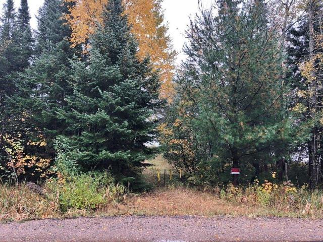 Pelican Lake vacant lot has 175 ft. of frontage on this premier 3,585 acre body of water with 0.79 acre of land to use or build on. This lot offers ATV & snowmobile trail access right from your own property. This lot is very level offering a great flat approach to the water's edge. This lot is on the western shoreline of the lake which is known for great fishing, but if you're looking for more boating and water sport fun then you have 3,585 other acres of water to explore and enjoy. The area also offer thousands of acres public lands for hiking, biking, or hunting.