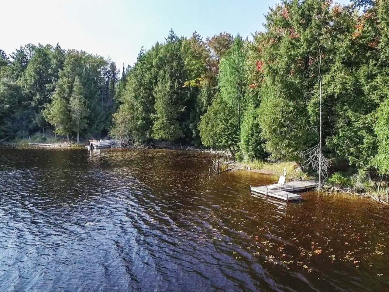 SELLER OFFERING $50K DISCOUNT OFF LIST PRICE IF CLOSED ON OR PRIOR TO 11/15/19!! Ultimate hunting, fishing, & wilderness retreat awaits! Stunning 48.3 acre property wraps around most of the Eastern end of pristine Gaylord Lake just North of Presque Isle, WI. Views are amazing, as well as the 2,618' of sand/stone shoreline. Explore hundreds of miles of ATV & snowmobile trails right off the doorstep. Enjoy a charming rustic cabin on the property which sleeps 8 while you plan your Northwoods lodge. Make your dreams become a reality & visit this unique piece of property yourself. Abundance of maple trees makes this an ideal place to produce large quantities of maple syrup. Additional 4.16 acres & 570' of frontage is available. Seller is open to 1031 Exchange, or other alternatives. Property can be enrolled in the Property Managed Forest program to reduce taxes. Seller currently pays $971/yr property taxes & will explore many options w/new owner to reduce property tax burden.