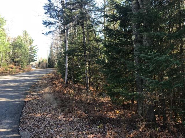 Two parcels, one low price. This parcel offers over 11 acres of land in the Town of Piehl. The land is located 6 miles south of Three Lakes. The one parcel abuts State of Wisconsin land. It is near the corner of Margaret Lake Rd and Hansen Ln (blacktop roads). Electric is there already. The lots are heavily wooded and close to Margaret Lake. You are surrounded by hundreds of acres of public forest land! It is the perfect place to build your up north dream home!