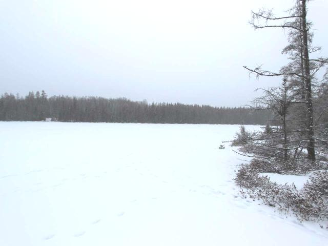 Beautiful and affordable Ess Lake lot. Cleared building site and ready to go. Private setting with full trees and abundant wildlife. Ess lake is a 55 acre lake with panfish and large mouth bass present.
