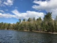 If you are looking for that special place in the Northwoods where you can get away from noise, speed boats, wave runners and jet skis and enjoy a peaceful crystal clear jewel of a lake be sure to check out this lot. The lot is forested and big and deep over 400 feet deep with 150 feet of sand lake bottom swimming frontage. The lot faces north westerly with a very pleasant view. There is no pubic access on Elsie Lake and no outboard or gas motors are allowed. However you can have an electric trolling motor for your pontoon or boat. Elsie Lake is a great bass lake and is also good for panfishing. This is the only lot presently available on Elsie Lake.