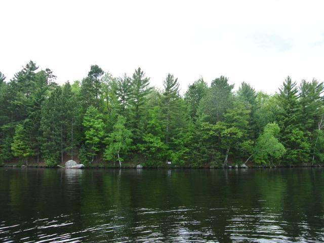 Big Stone Lake lot picture
