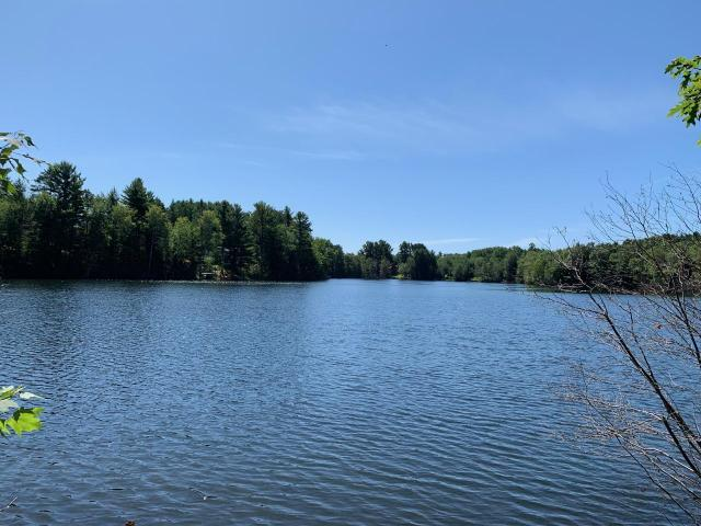 Beautiful Halls Lake Lot. Close to town, shopping, recreation and hospitals. 99 ft of frontage on a hard bottom clear lake. The perfect place to kayak, canoe, swim, paddle board & fish. Come see today as this lot is priced to sell.