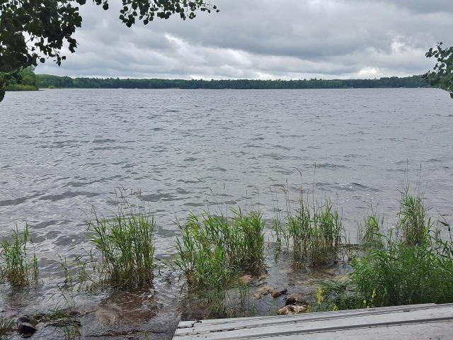 Big Portage Lake lot picture