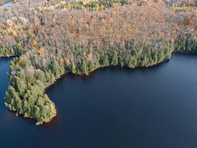 REDUCED! Wilderness lakeside retreat! Situated on wild Gaylord Lake just N of Presque Isle, this stunning property has 48.3 acres, 2,618' sand/stone frtg, charming rustic cabin, outbuildings, pvt peninsula, maple trees & a sense of privacy like nowhere else. Current price reflects a frontage value of only $248/ft, which is well below neighboring lake front values. Whether your passion is hunting, fishing, nature or making maple syrup! The frtg encompasses almost the whole E end of the 80-acre lake where fish are abundant and Canadian views are everywhere. Explore ppty on groomed trails plus 100s of miles of ATV & snowmobile trails to access right from property! Adjacent 4.16 acre parcel with 570' more feet of frontage is also available. The seller will consider a land contract, 1031 exchange or other alternatives. Property can be enrolled in Managed Forest Program to cut taxes...seller currently pays $971/yr in ppty taxes & will help new owner w/strategies to keep taxes down.