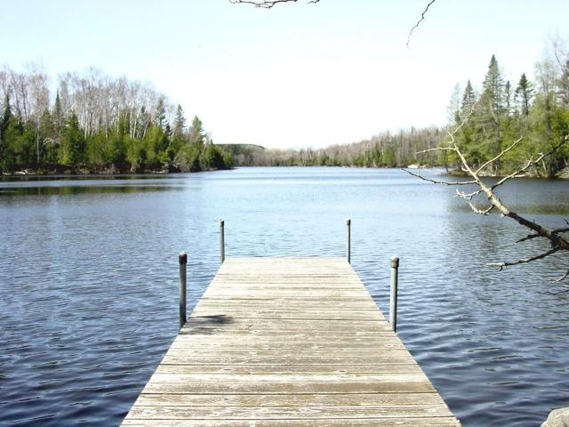 Undocumented Lake lot picture