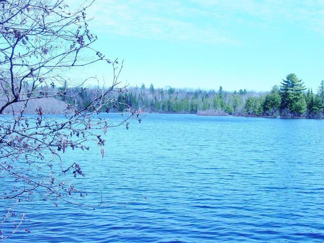 Rock Lake lot picture