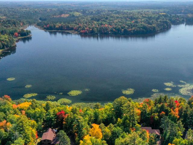 Pickerel Lake lot picture