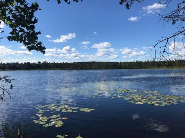 Little Portage Lake lot picture