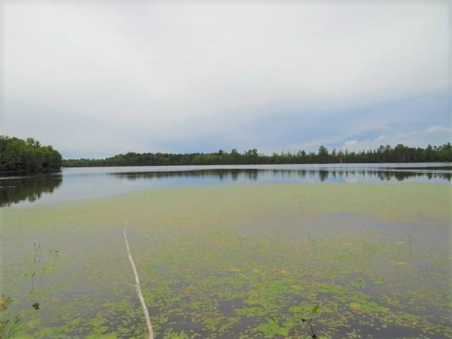 Moccasin Lake (3L) lot picture