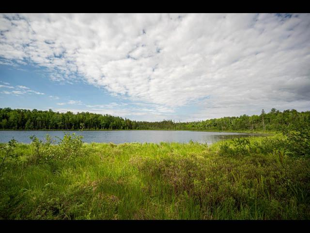 Clearwater Lake lot picture