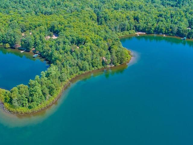 Forest Lake lot picture
