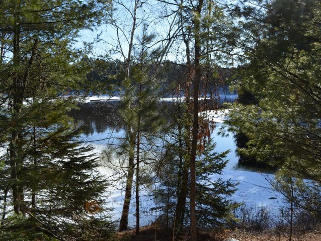 Lake Nokomis lot picture
