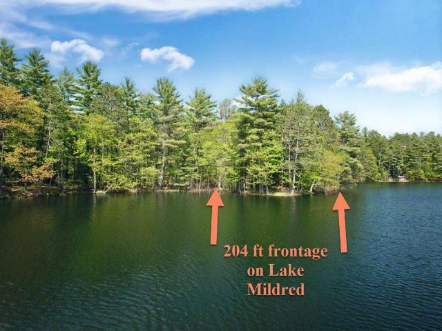 Lake Mildred lot picture