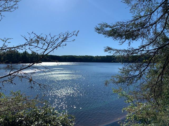 Landing Lake lot picture