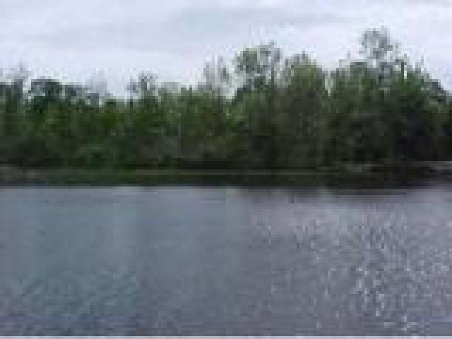 Lake Thompson lot picture