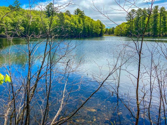 Bird Lake lot picture