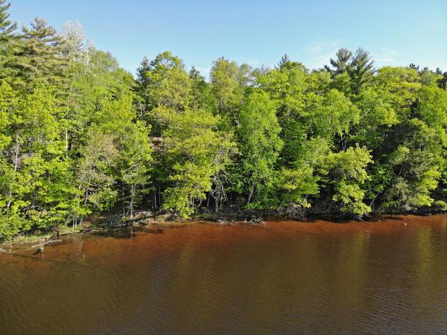 Scattering Rice Lake lot picture