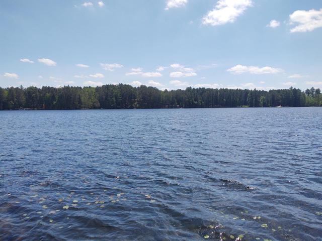 Silver Lake lot picture
