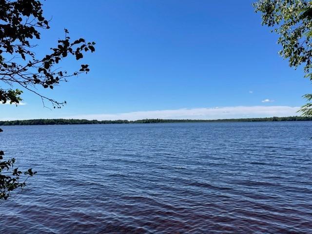 Big Lake lot picture