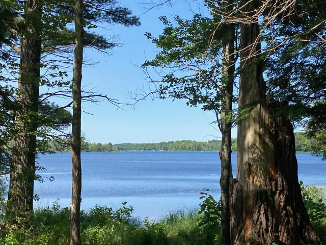Shishebogama Lake lot picture