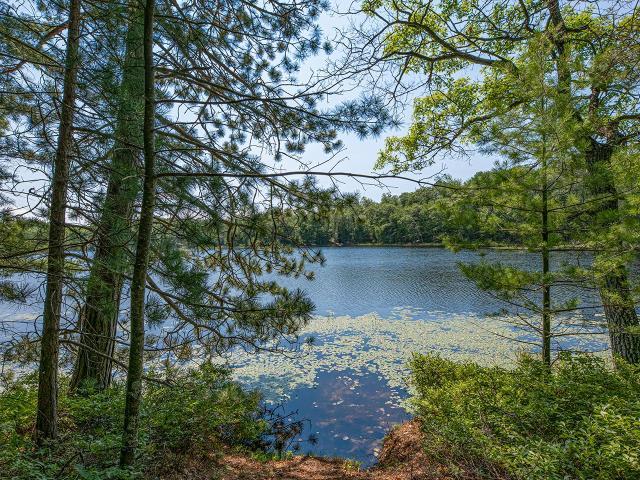 Long Lake (N) lot picture