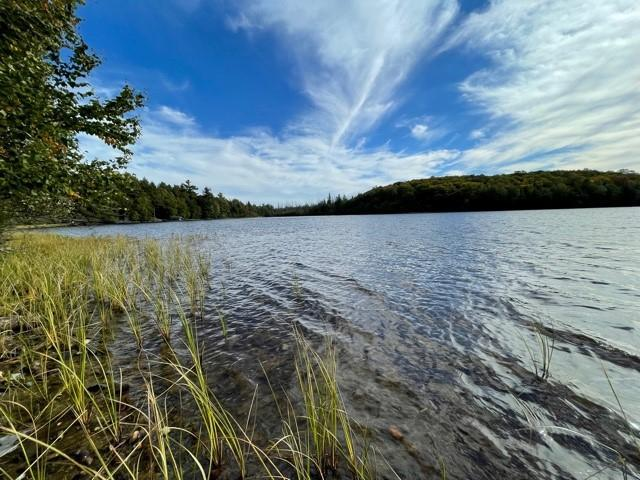 Imogene Lake lot picture