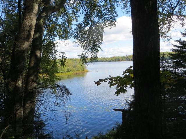 McCullough Lake lot picture