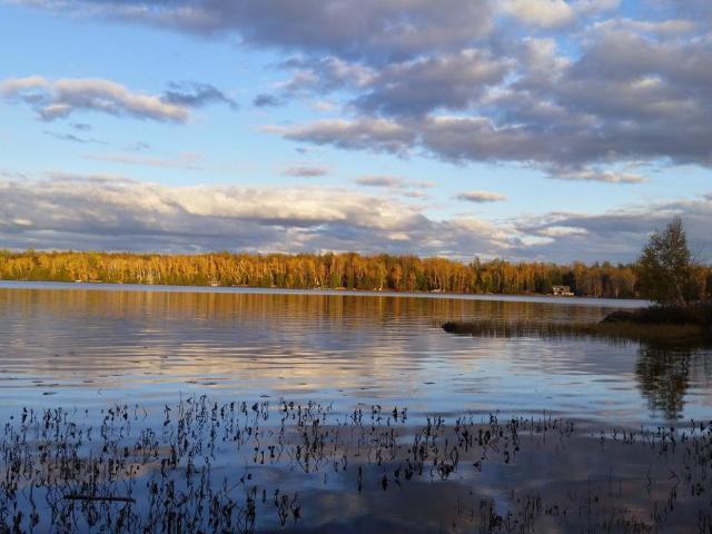 Squaw Lake lot picture