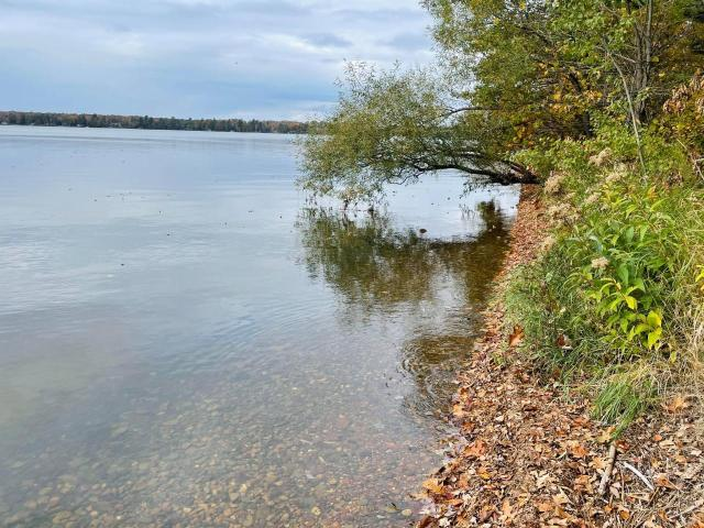 Pelican Lake lot picture