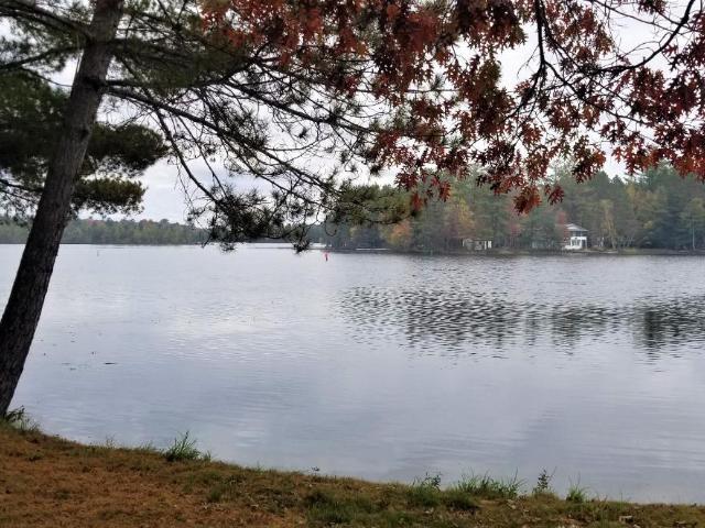Dog Lake lot picture